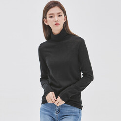 Wool See-Through Look Highneck Knit (T-3842)