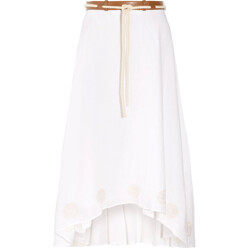Fern Pleated Embroidered Georgette Maxi Skirt