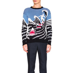 Surfing Scenery Pullover