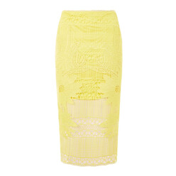 Placement Lace Midi Skirt